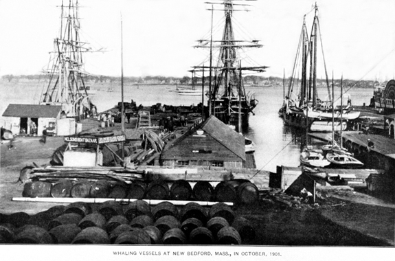 Whaling Ships Docked at new Bedford, Ma. in 1901 - www.WhalingCity.net